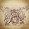MightyOwl