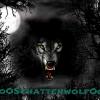 oOSchattenwolfOo