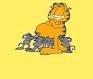 Garfield62