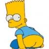Bart_S